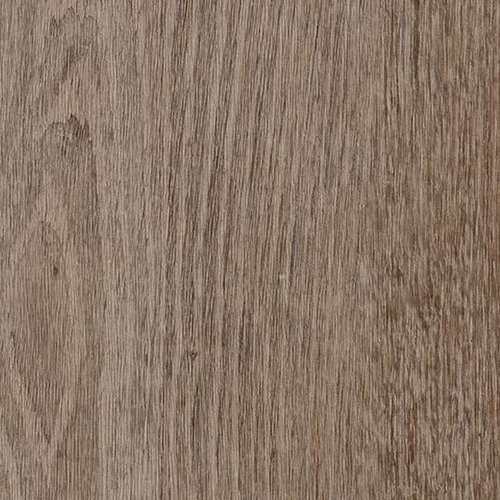 natural grey oak 69137