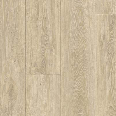 Blackjack Oak  22215