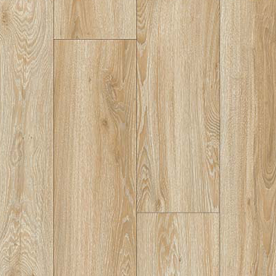 Blackjack Oak  22220