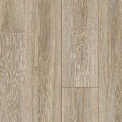 Blackjack Oak  22246