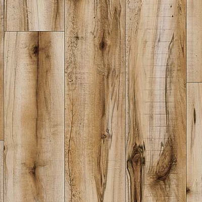 Cotton Wood 20839