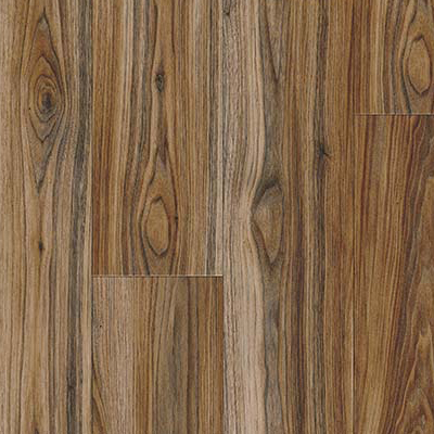 Persian Walnut 20843